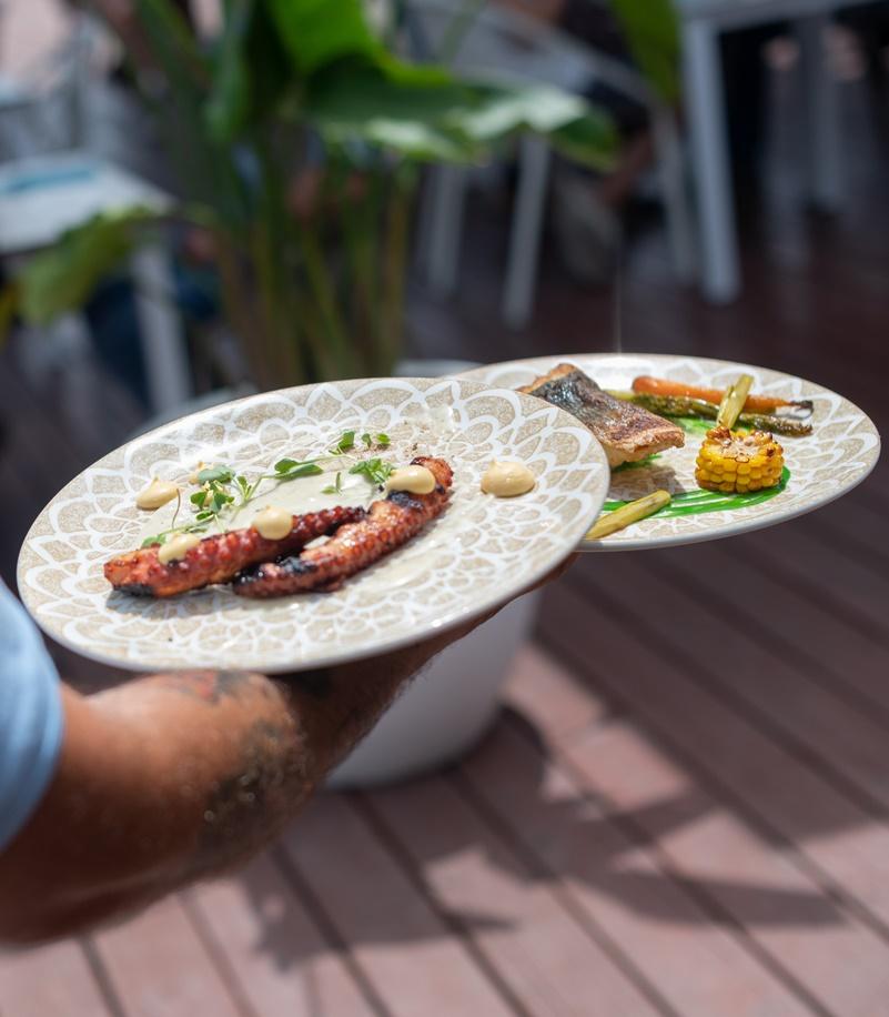 xerta mar - bar - restaurante -pescaderia - gastro bar-arroces-meditarreno-ampolla-delta ebre- pescado fresco-pulpo brasa-cigalas